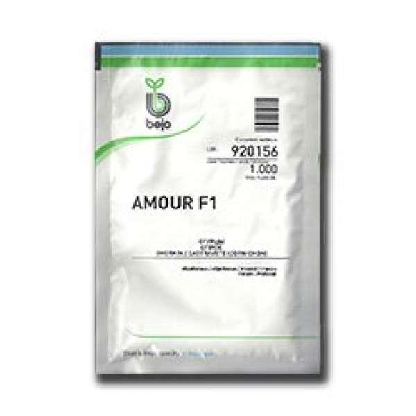 castraveti Amour F1 - 250 sem